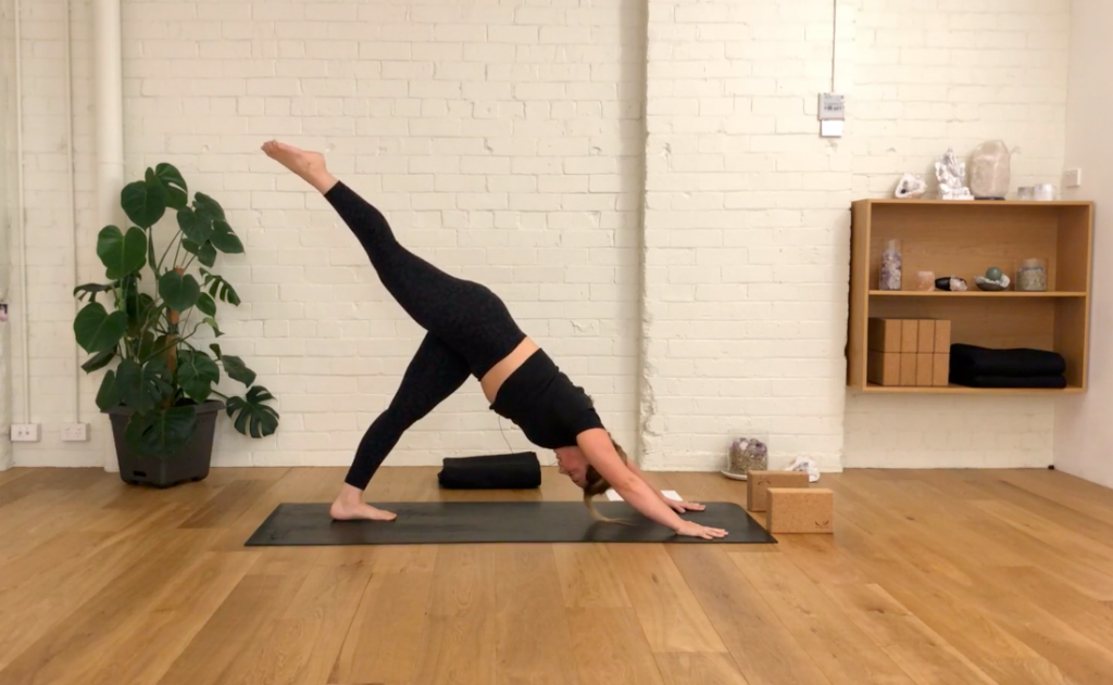 Yoga Evolve - Stable Standing Holds