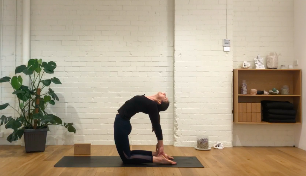 Yoga Evolve - Move Your Spine