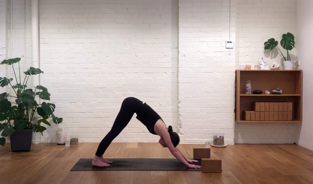 Yoga Evolve - Sun Salutation Sadhana
