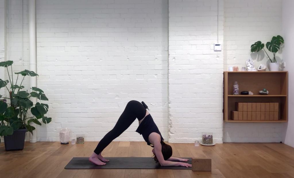 Yoga Evolve - Devotion Through Practice